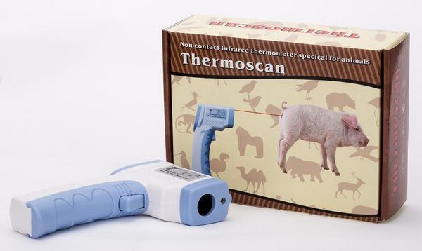 Термометр для измерения температуры поголовья