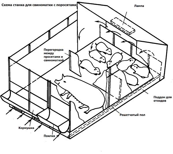Схема опоросного станка
