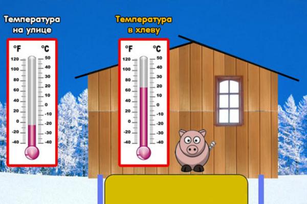 Температура в хлеву
