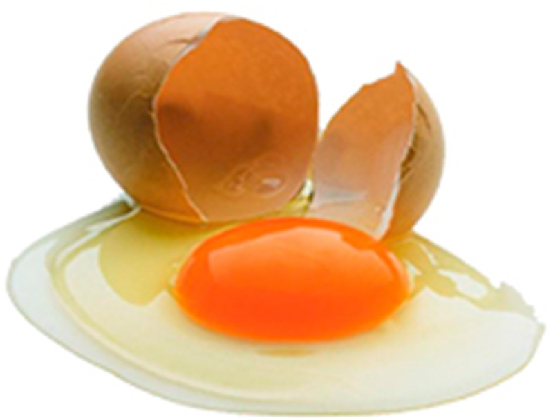 Кровь на скорлупе и кровь внутри куриного яйца