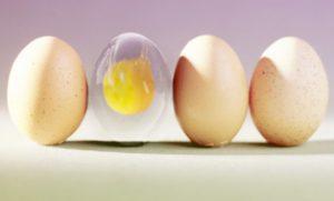 яйца без скорлупы-2